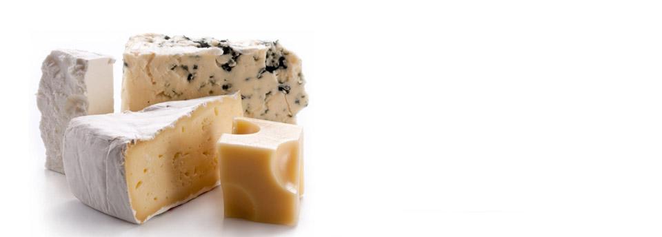 JamonShop Cheese